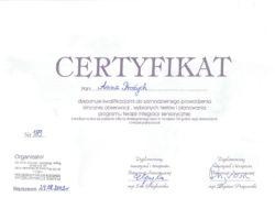 Kwalifikacje do samodzielnego prowadzenia klinicznej obserwacji wybranych testów i planowania programu terapii integracji sensorycznej