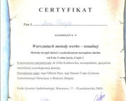Certyfikat uczestnictwa w warsztatach: Metody werbo-tonalnej cz.1