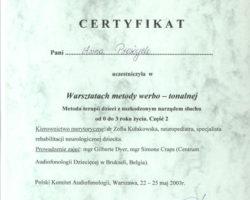Certyfikat uczestnictwa w warsztatach: Metody werbo-tonalnej cz.2